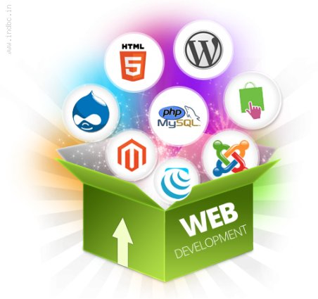 Best IT company in jaipur
