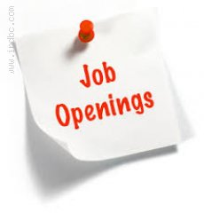 Assistant Manager ( Transaction Services )